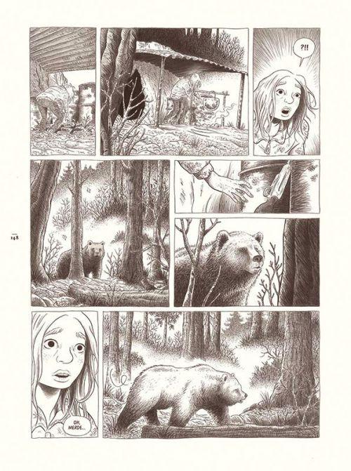 ours bande dessinée