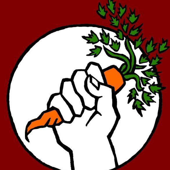 carotte rebelle